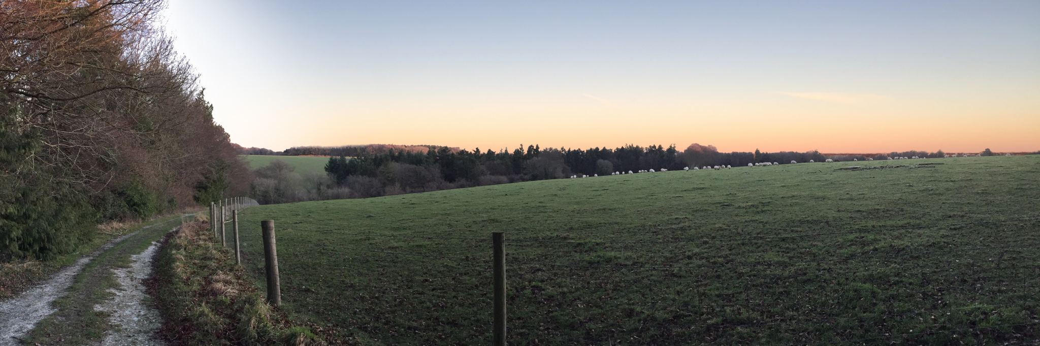 3 Christmas Walks in the English Country Side