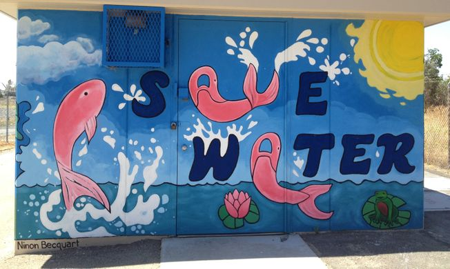 environment save water
