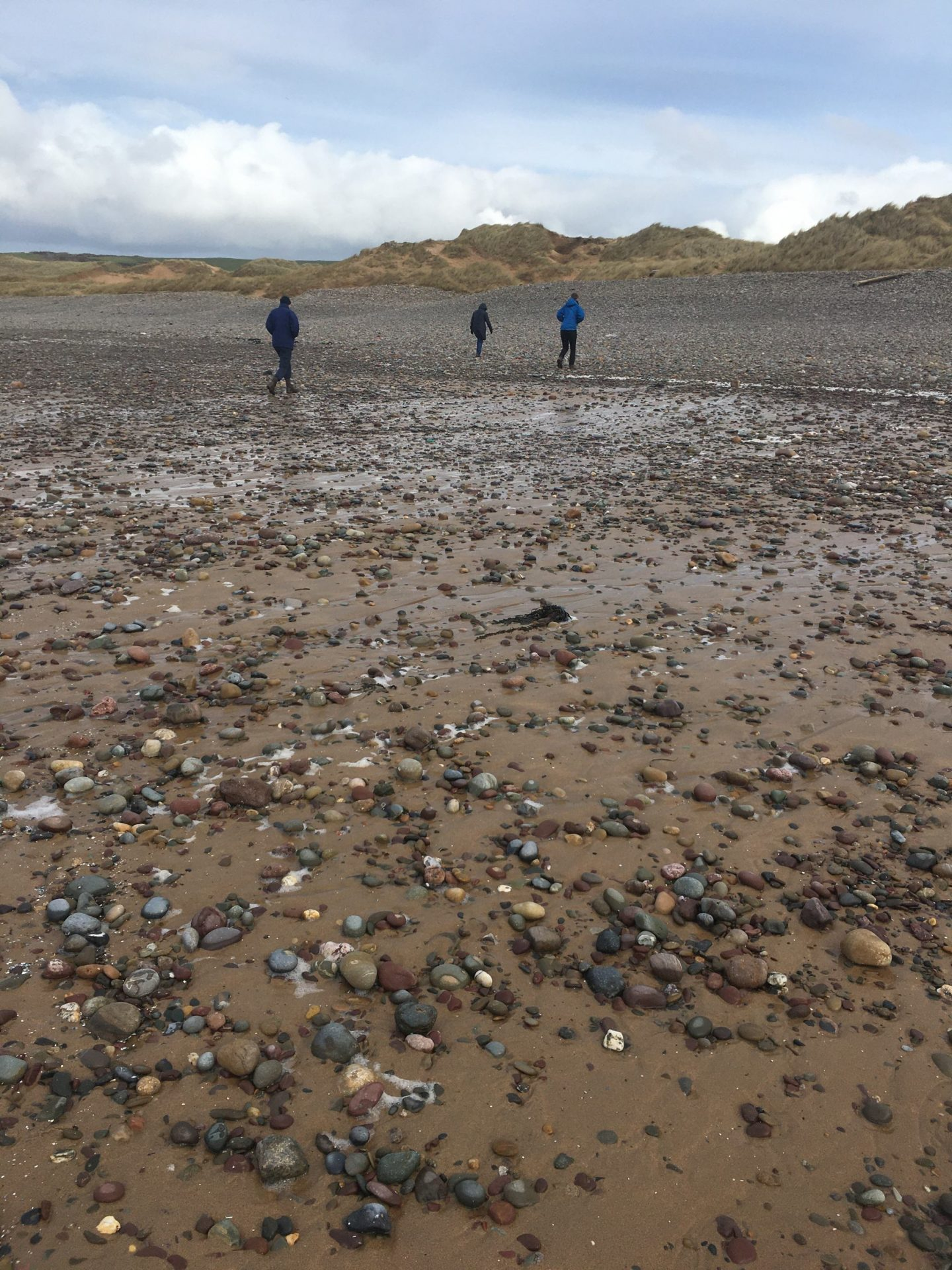 Freshwater West Pembrokeshire